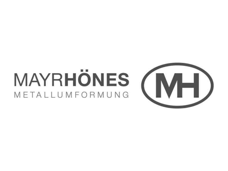 Teldanet GmbH: Mayrhönes Logo