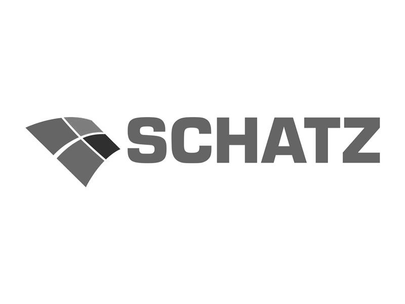 Teldanet GmbH: Schatz Logo